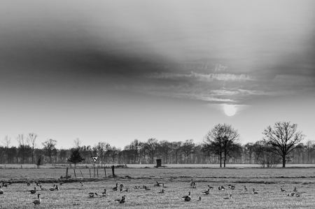 Spaziergang_03-2_2021_004