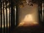 Herbst-Aufnahmen (Bagno)