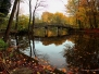 Herbstaufnahmen am Bagno