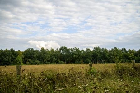 Moorlandschaften_09_2020_005