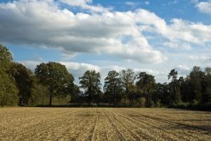 TN_Landschaft_und_Himmel_003
