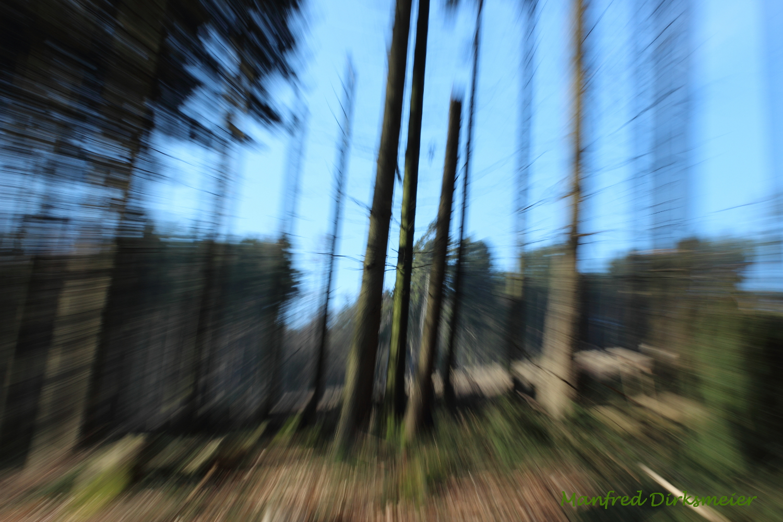 Perspektiven_Lienen_03_2018_045