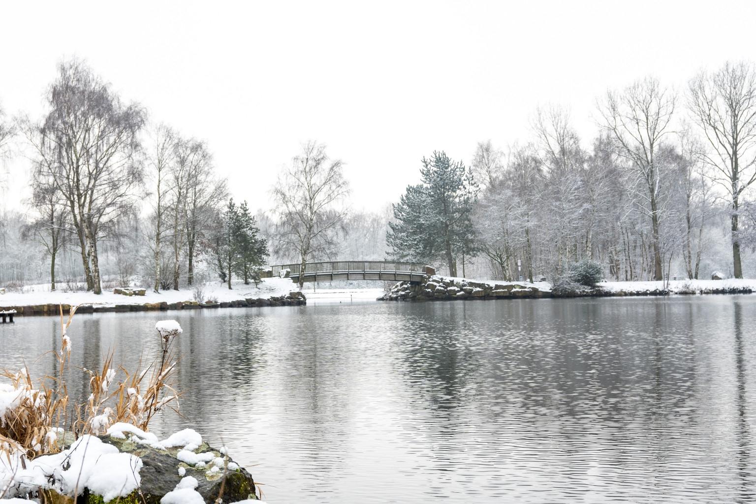 Winterlich_02-1_2021_007