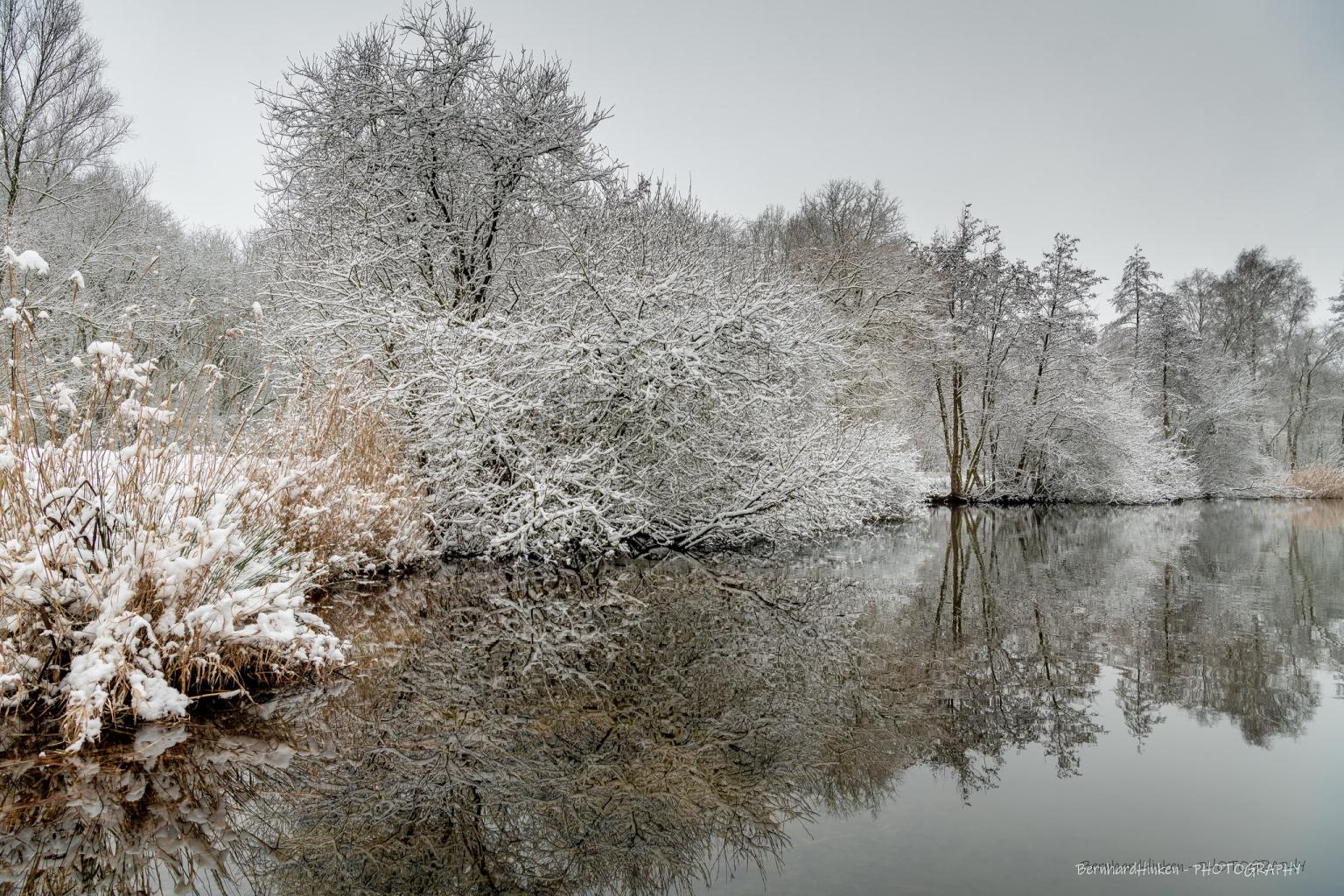 Winterlich_02-1_2021_013