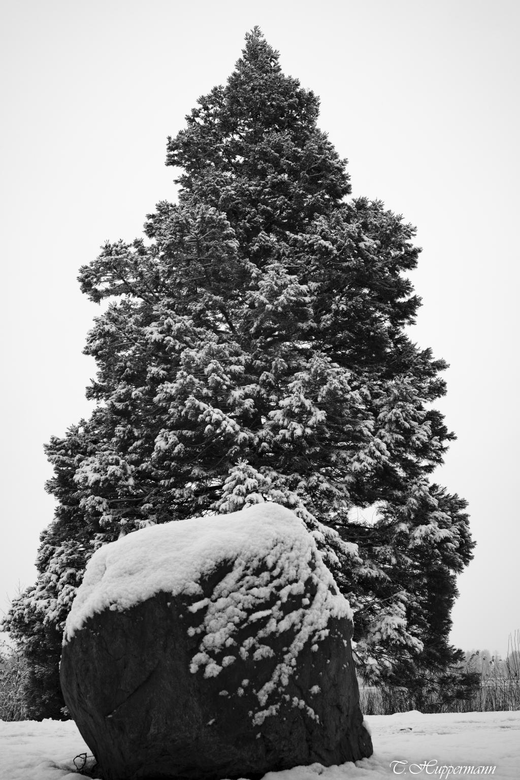 Winterlich_02-1_2021_016