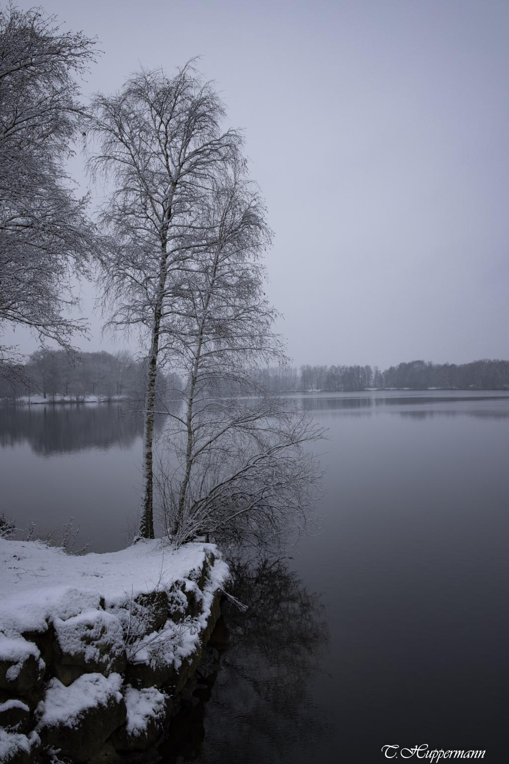 Winterlich_02-1_2021_017